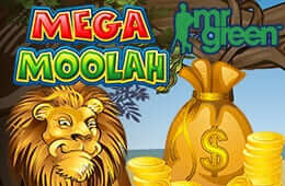 1-preview-260х170-mega moolah slot at Mr Green